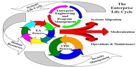 Four Phases of Business Cycle Essay Example for Free